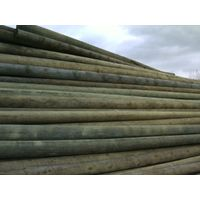 Pine poles for electrical and telocomunication networks thumbnail image