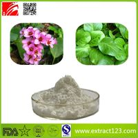 High Quality Purple Bergenia Extract
