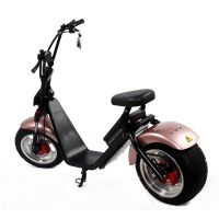EEC approved 60V 12AH 1000W Adult Electric Motorcycle ,Citycoco