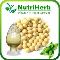 Soybean Extract.Soybean Extract Soy Isoflavone