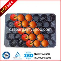 Plastic Apple Container Tray