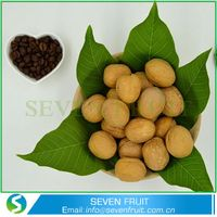 Large Size Walnuts Walnuts In Shell Walnuts With Out Shell Cheap Walnuts In Shell thumbnail image