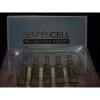 Sentien Cell