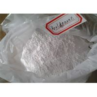 The Most Popular Steroid Boldenone for Muscle and Strength Growth