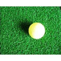 putting green artificial grass thumbnail image