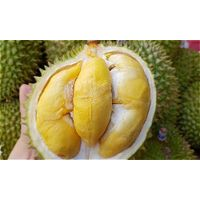 FRESH/ FROZEN DURIAN IN VIETNAM READY EXPORTING thumbnail image