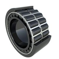 Double-Row Cylindrical Roller Bearings thumbnail image