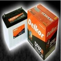 Battery for Automobile