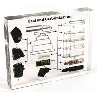 Qianfan Eucational Embedded Biological Plastomount Specimen for teaching - Coal and Carbonization thumbnail image