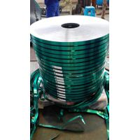Co-polymer Coated Steel Strip