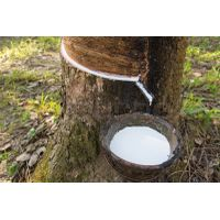 Natural Rubber Latex Manufacturer