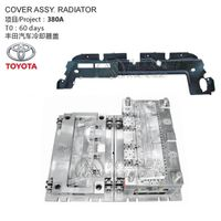 Auto Cover Assy. Radiator Mold