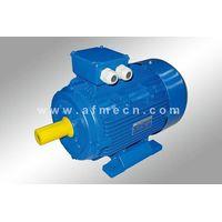 IE1 Standard Efficiency Three Phase Asynchronous Motors