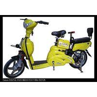 e-bike (xiao jin niu)