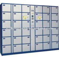 Electronic storage locker