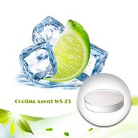 Professional manufacture supply food additive cooling flavor ws-23 powder cooling agent WS 23