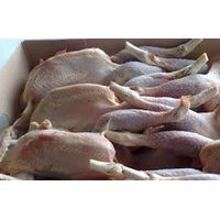SGS CERTIFIED WHOLE FROZEN CHICKEN
