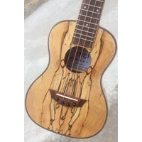 Spalted Maple High Glossy Concert Ukuleles with Case thumbnail image