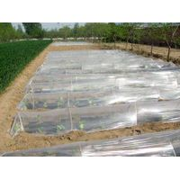 plastic mulching film for agricultural thumbnail image