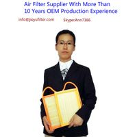 air filter manufacturer-China air filter manufacturer with more than 10 years OEM production experie thumbnail image
