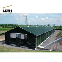 Steel Structure Broiler Chicken Poultry Farm Shed