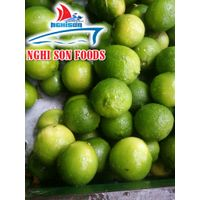 Seedless Lime From Vietnam