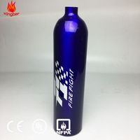 1kg Portable Dry Powder Foam Aluminum Alloy Fire Extinguisher Cylinder with CE Standard