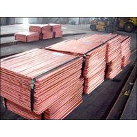 Factory price 99.99% pure copper cathode / cathode copper 99.99%