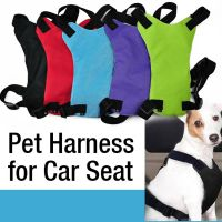 Pet harness for car seat safety