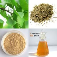 Ginkgo Biloba Extract CP2015