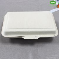 1000ml 2-Compartments Hinged Lid lunch Box