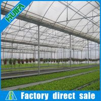 Large High Tunnel Commercial Vegetable Greenhouse