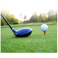 factory price synthetic golf turf