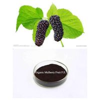 Organic Mulberry Fruit P.E.