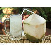 DRINKING FRESH COCONUT WATER - DIAMOND SHAPE COCONUT