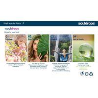 Organic detergents, fabric softeners and dishwashing detergents thumbnail image