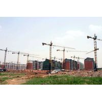 Self-erecting Tower Crane TC6013 max load 8t