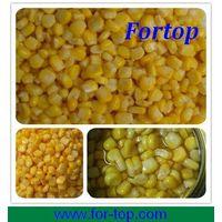 Best Canned Sweet Corn