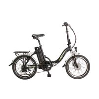 Folding Electric Bike/Bicycle