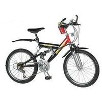 """20""""bicycle 2041"""