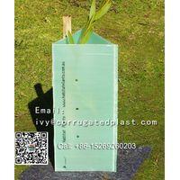 Polypropylene Plastic Corrugated Roll/Corflute Plastic Tree Guards thumbnail image