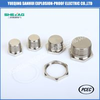 Explosion-proof Hexagon brass stopper plug