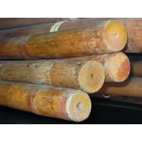2016 Hot sell tam vong bamboo pole solid With Logo