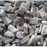 Frozen Mushroom Fungus Oyster Cubes