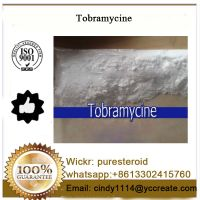 Antibiotics Raw Powder Tobramycine For Antimicrobial
