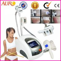 59 Big Sale Promotion Criolipolisis Machine Freeze Fat with Best Price