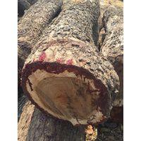 Rosewood logs