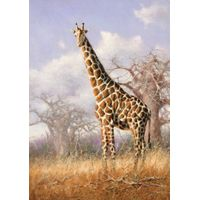 Best Price modern animal stretched oil painting wall art