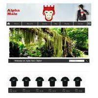 Apparel Website Designing & Development