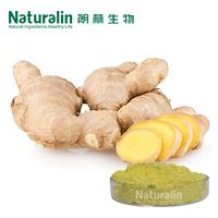 Ginger Extract thumbnail image